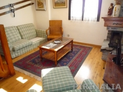 Baqueira by the ski slopes apartment Tanau AMB